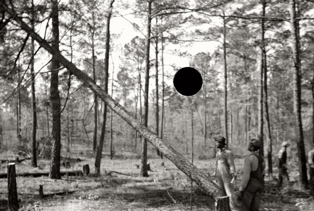 75. Untitled. North Carolina. 1938. John Vachon. 8a03246.