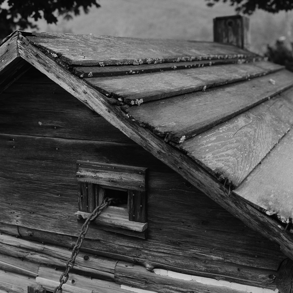 2. Early Cabin Replica and Chain, Elizabethtown, NY. 1999. Toned Gelatin Silver Print.