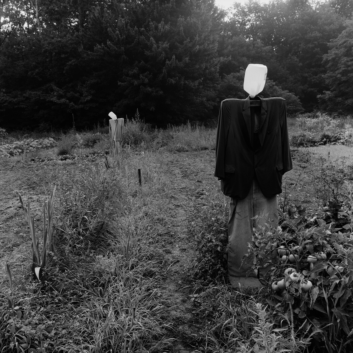 """9. Scarecrows, Community Garden. Lily Dale. 1993. Toned Gelatin Silver Print. 15""""X15""""."""