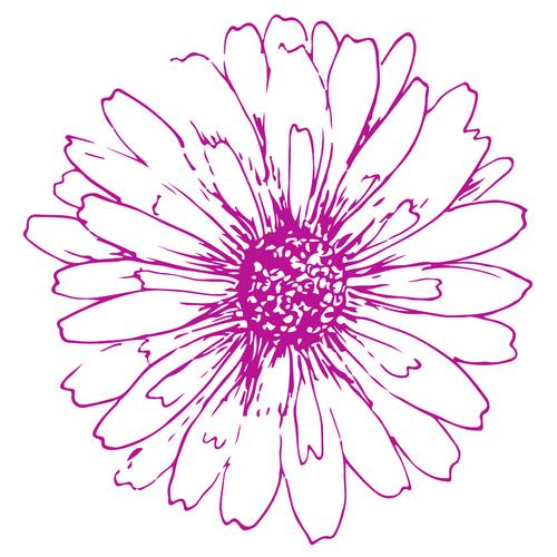 Handdrawn Circle Logo (2).jpg