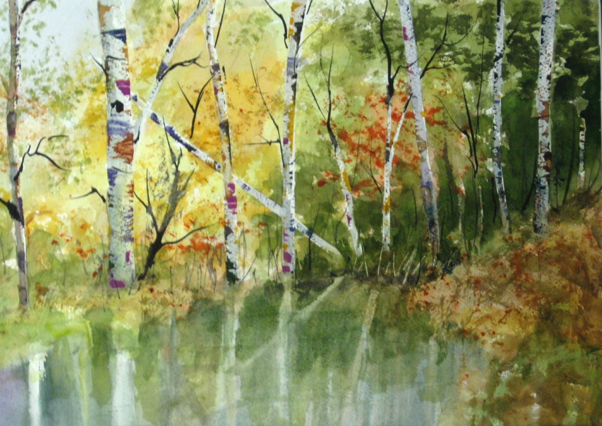 Birch_Pond_1-2-2012_002.JPG