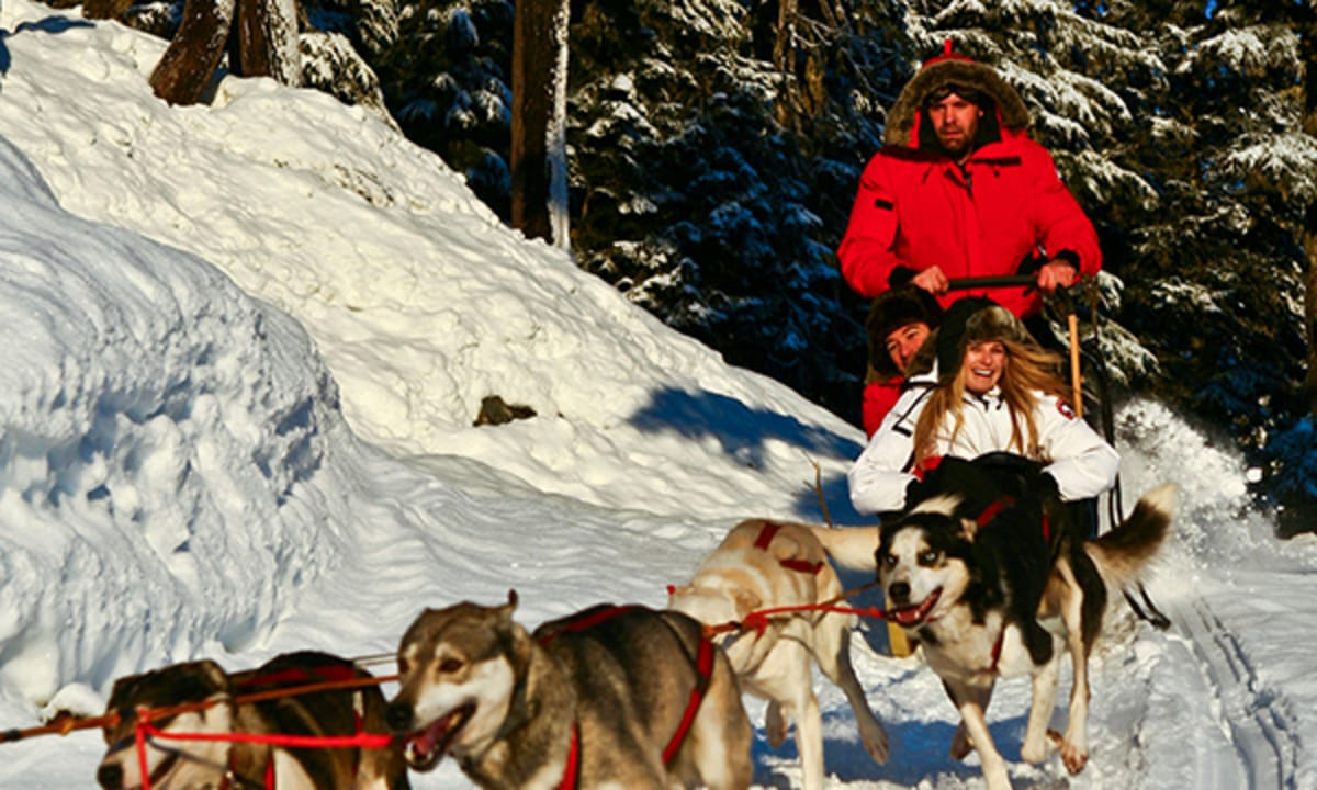 Activities_DogSledding_600x360.jpg