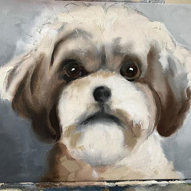 Gia  #dogart #dog #art #artist #dogsofinstagram #petportrait #drawing #dogs #dogdrawing #animalart # #artwork #dogportrait #illustration #artistsoninstagram #doglover  #petportraits #dogpainting #portrait #dogstagram #pet #puppy #draw #pets #instaart #watercolor #petportraitartist