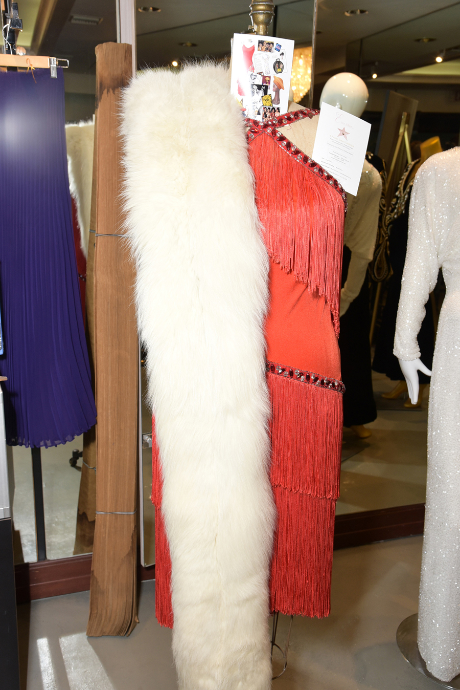 A Bob Mackie design for the Pointer Sisters.