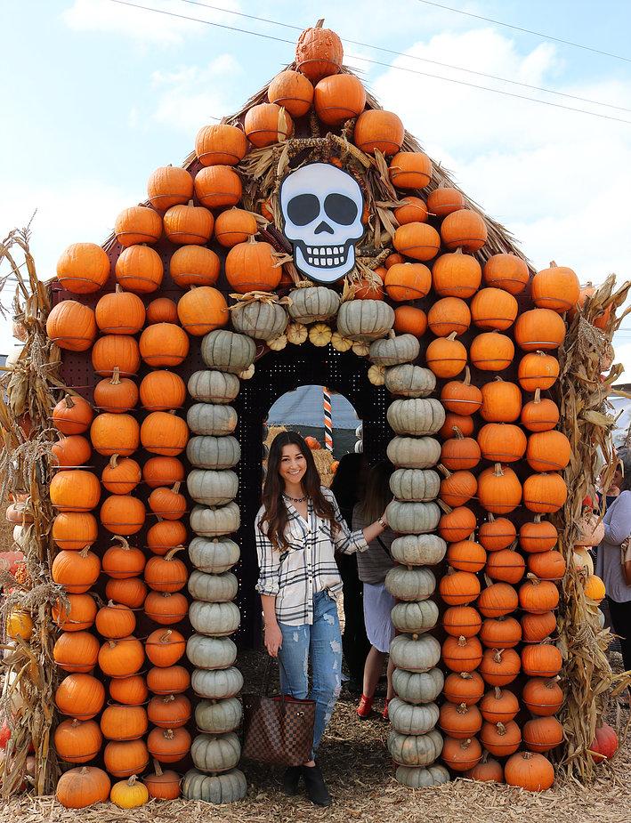 Pumpkin Queen 4.jpg