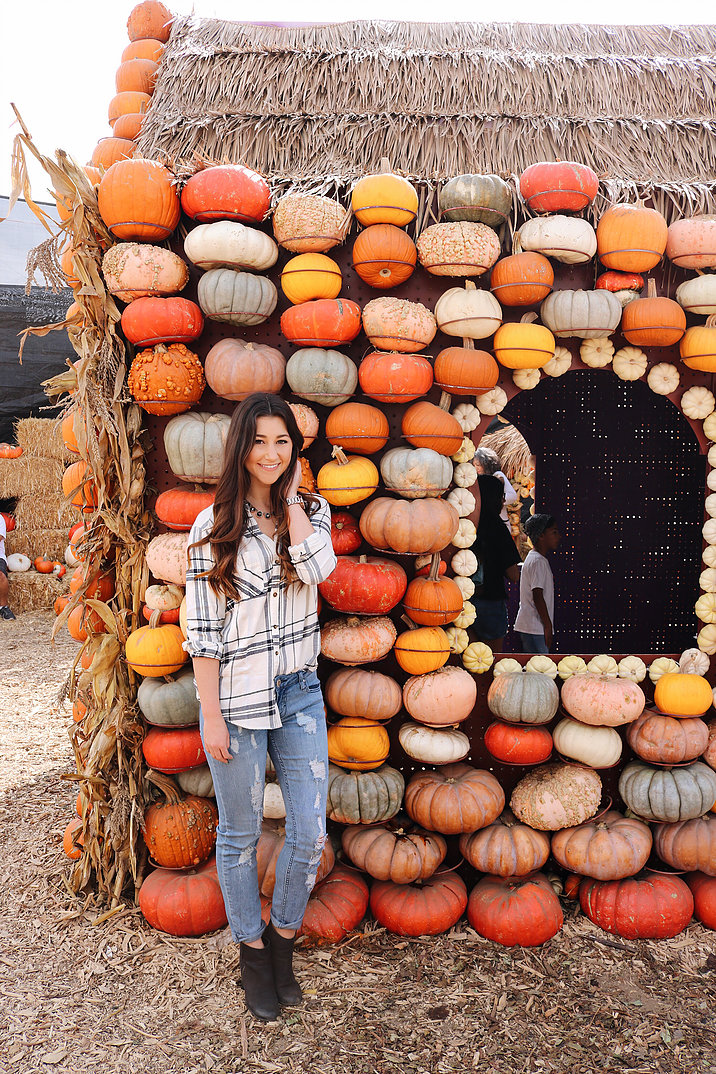 Pumpkin Queen 1 .jpg
