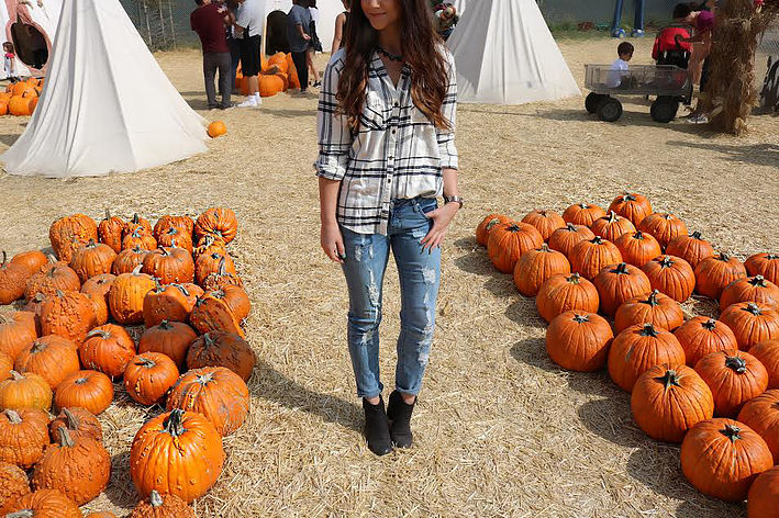 Pumpkin Queen 3.jpg