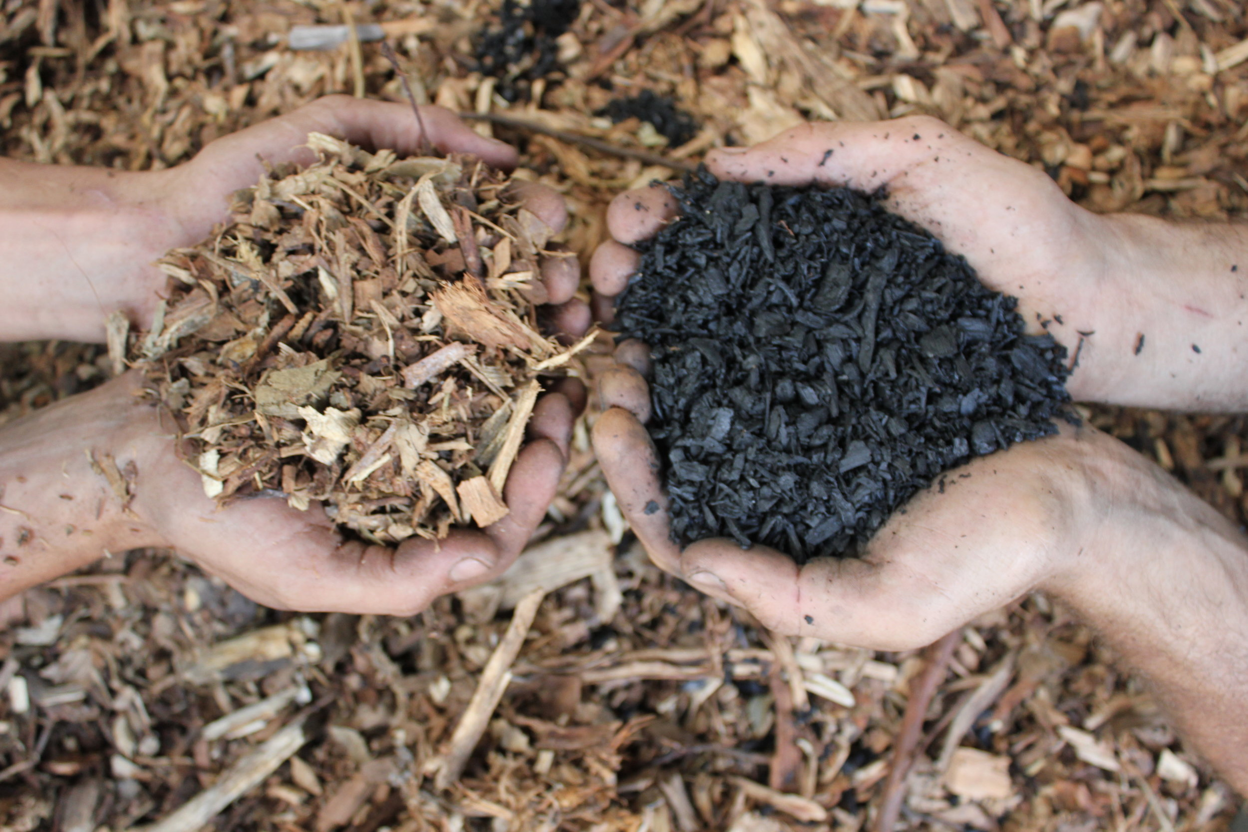 From wood chip to biocarbon
