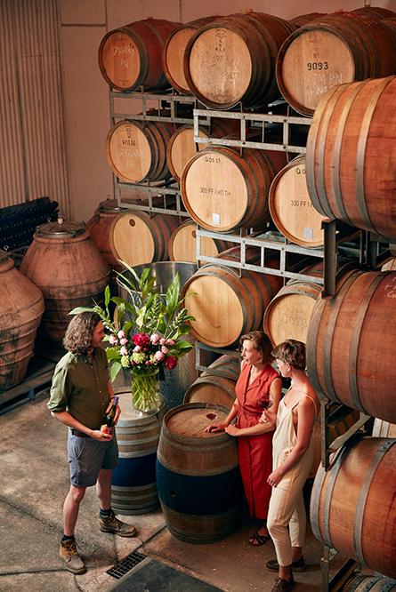 Wine Tasting in Quealy Wines' Barrel Room