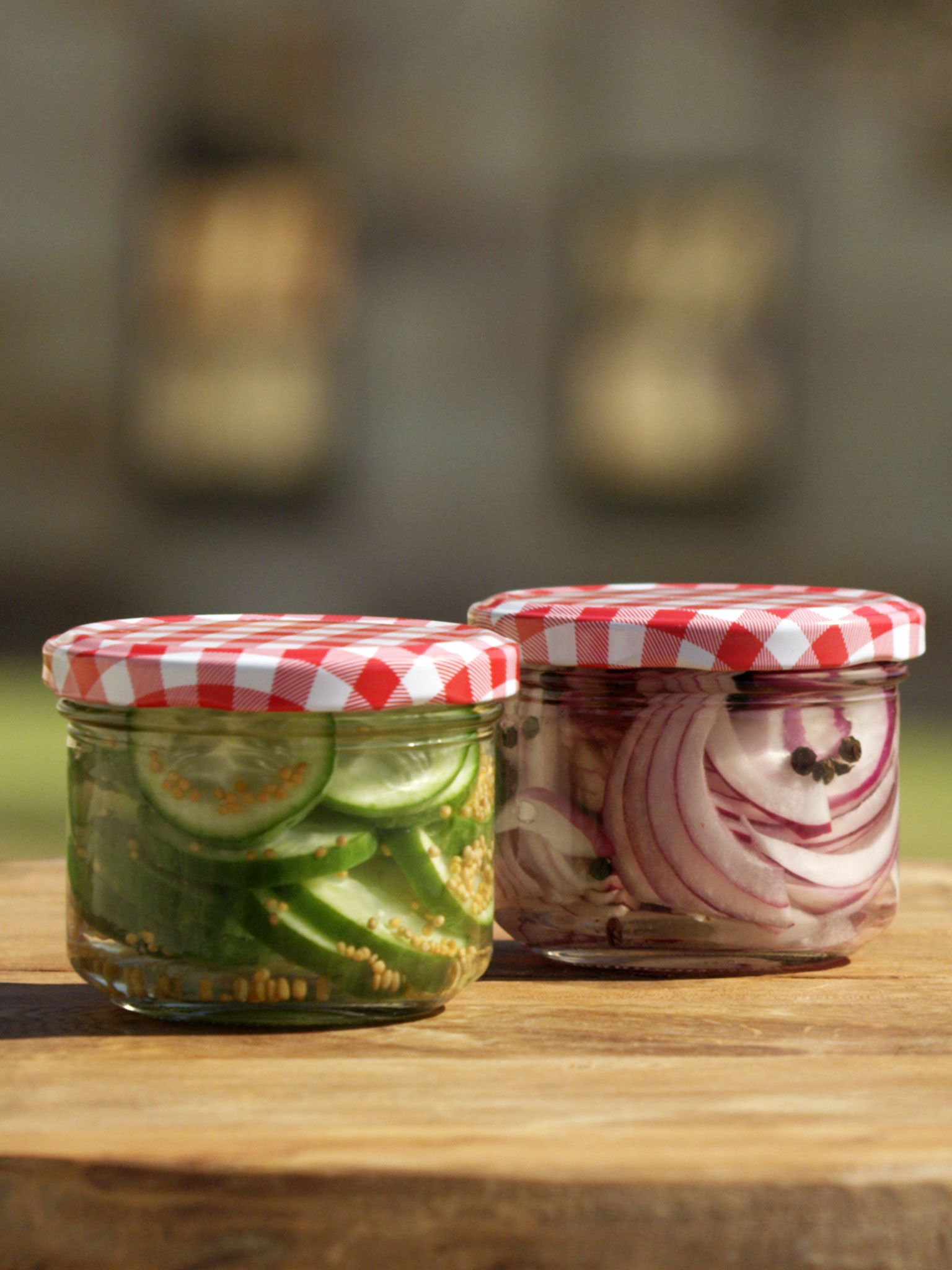 2-101-Cucumber-and-Red-Onion-Pickle-web.jpg