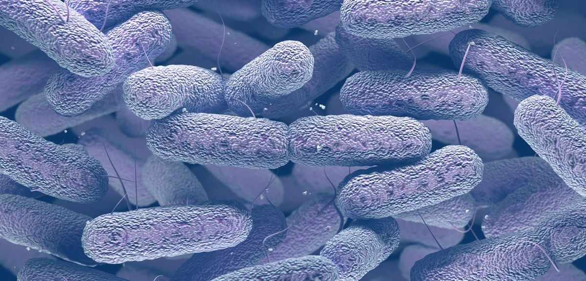 Controlling the spread of antibiotic resistant bacteria. Credit: Shutterstock