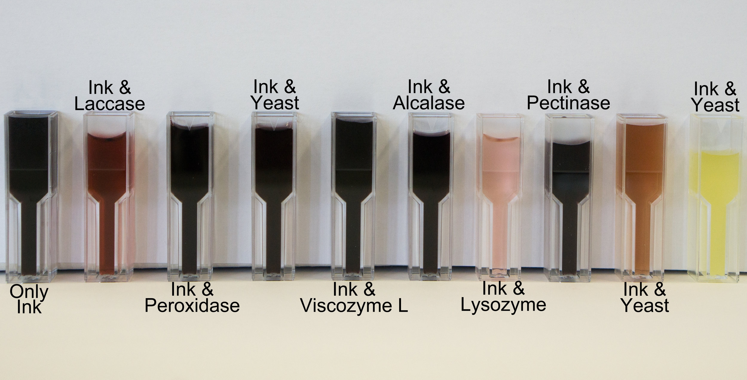 Ink samples with laccase, lysozyme and yeasts mixtures showed obvious decolourisation results.