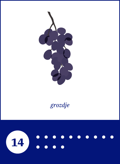 03_Grapes.png