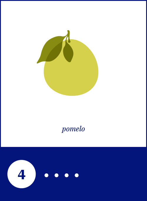 10_Pomelo.png