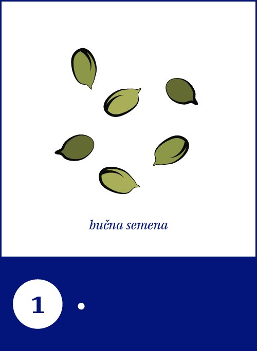 33_Pumpkin Seeds.png
