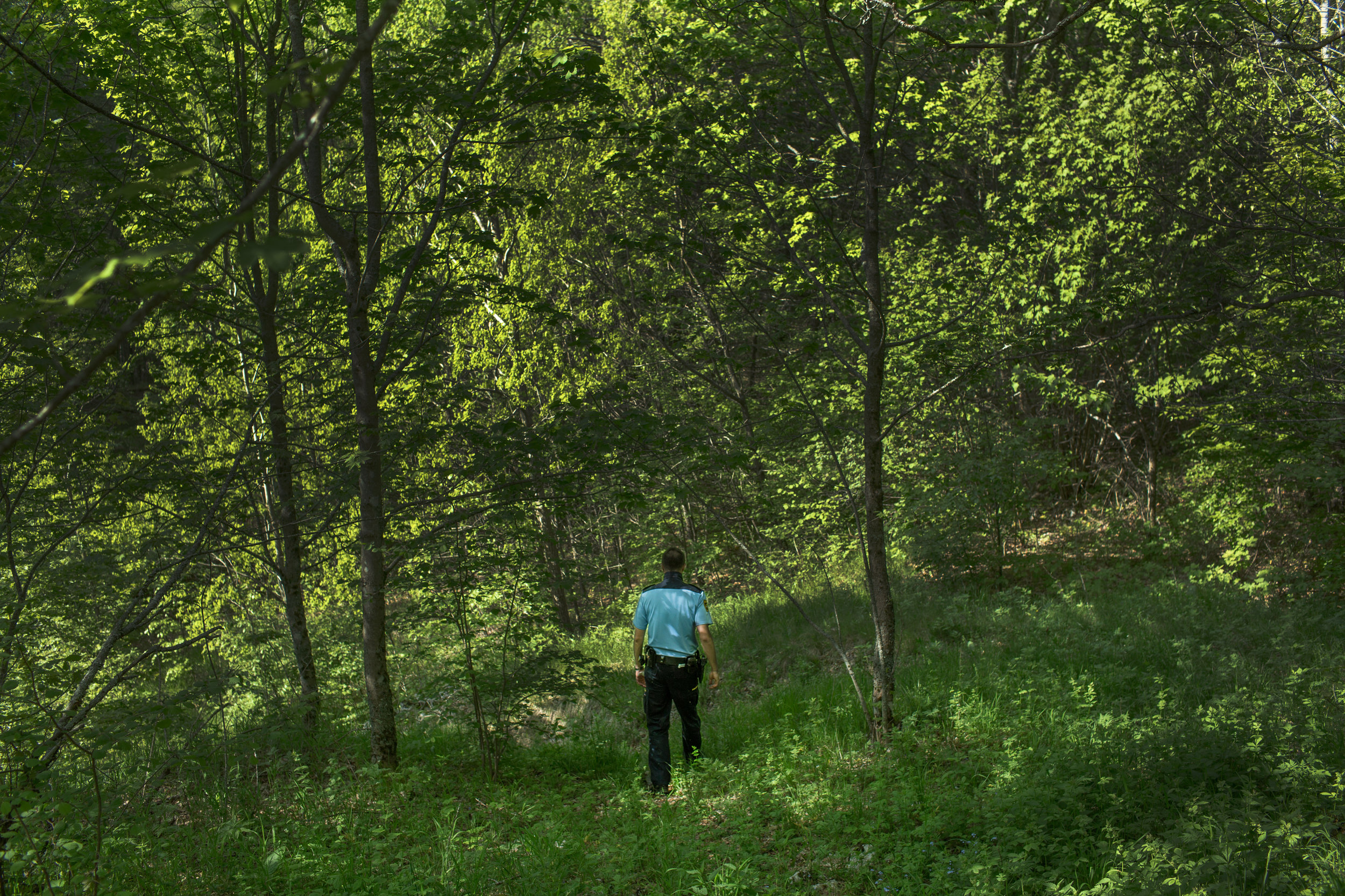 A Slovenian police officer in a forest at the border between Slovenia and Croatia, near town Ilirska Bistrica, Slovenia.