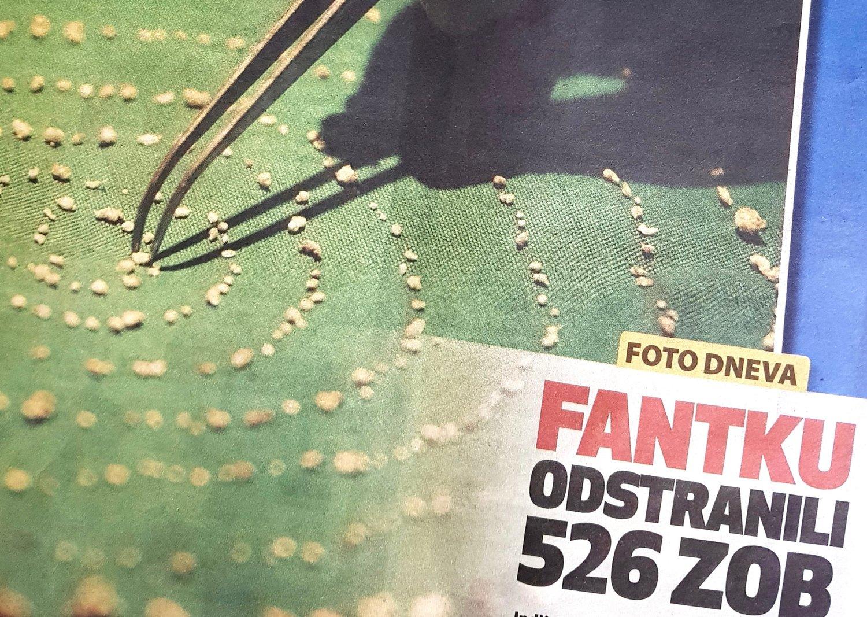 Foto: Razkrinkavanje.si