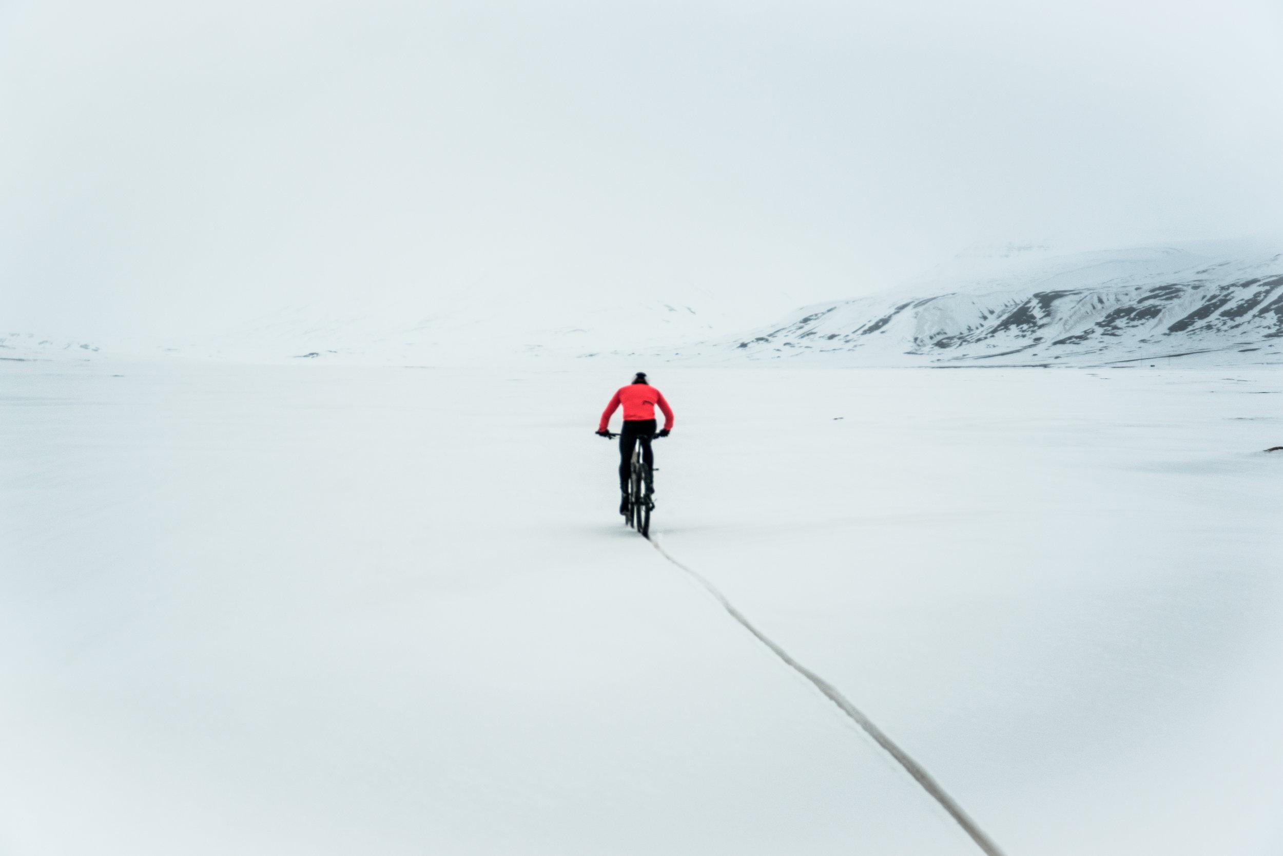 Bike tracks.JPG