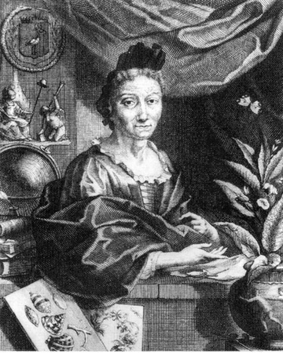 Portret van Maria Sibylla Merian door Jacobus Houbraken, ca. 1700.