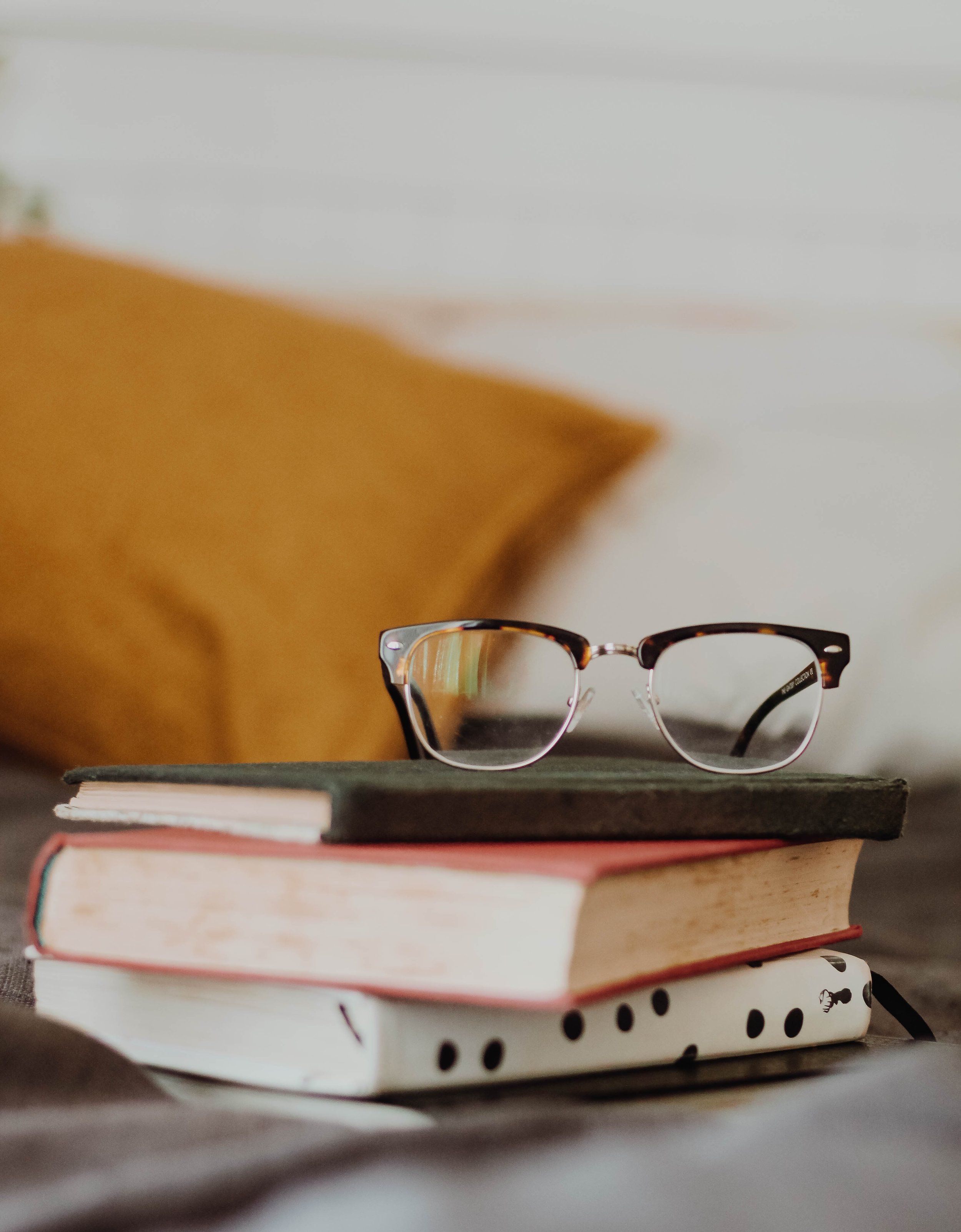 Leer es placer. Nos debe conducir a preguntas y a la curiosidad. -
