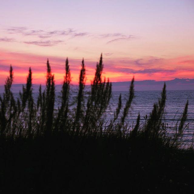 On ne se tannera jamais de ces couchers de soleil gaspésiens 💜 . . . #Gaspesie #bonjourquebec #mitis #tourismemitis #tourismegaspesie #soleil #sunset #leketch #microbrasserieleketch #sainteflavie #explorecanada #gaspesiejetaime