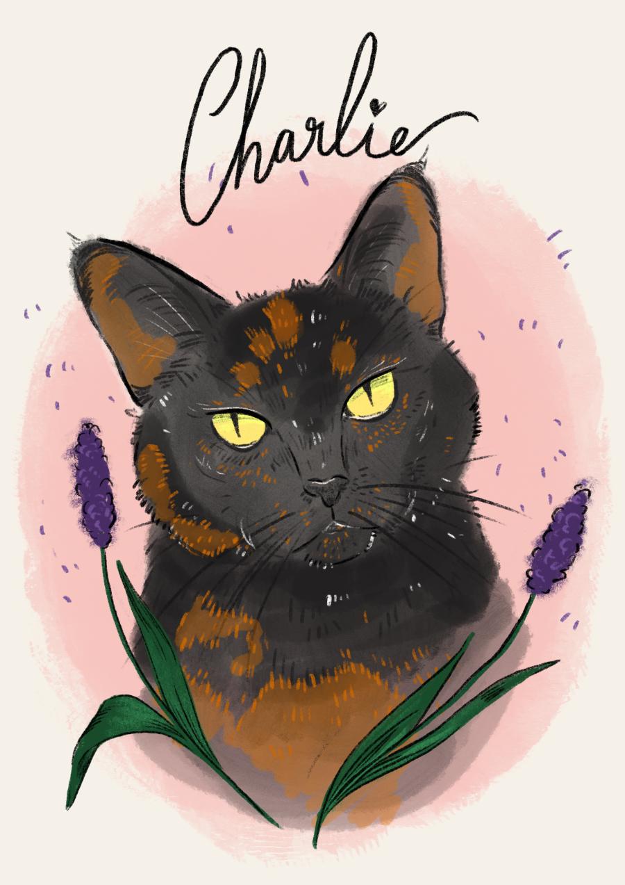 Custom Pet Portrait: Charlie