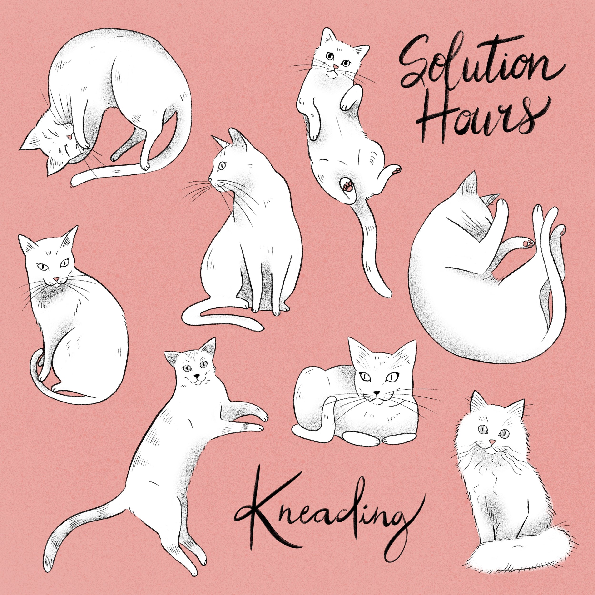 Solution Hours - Kneading