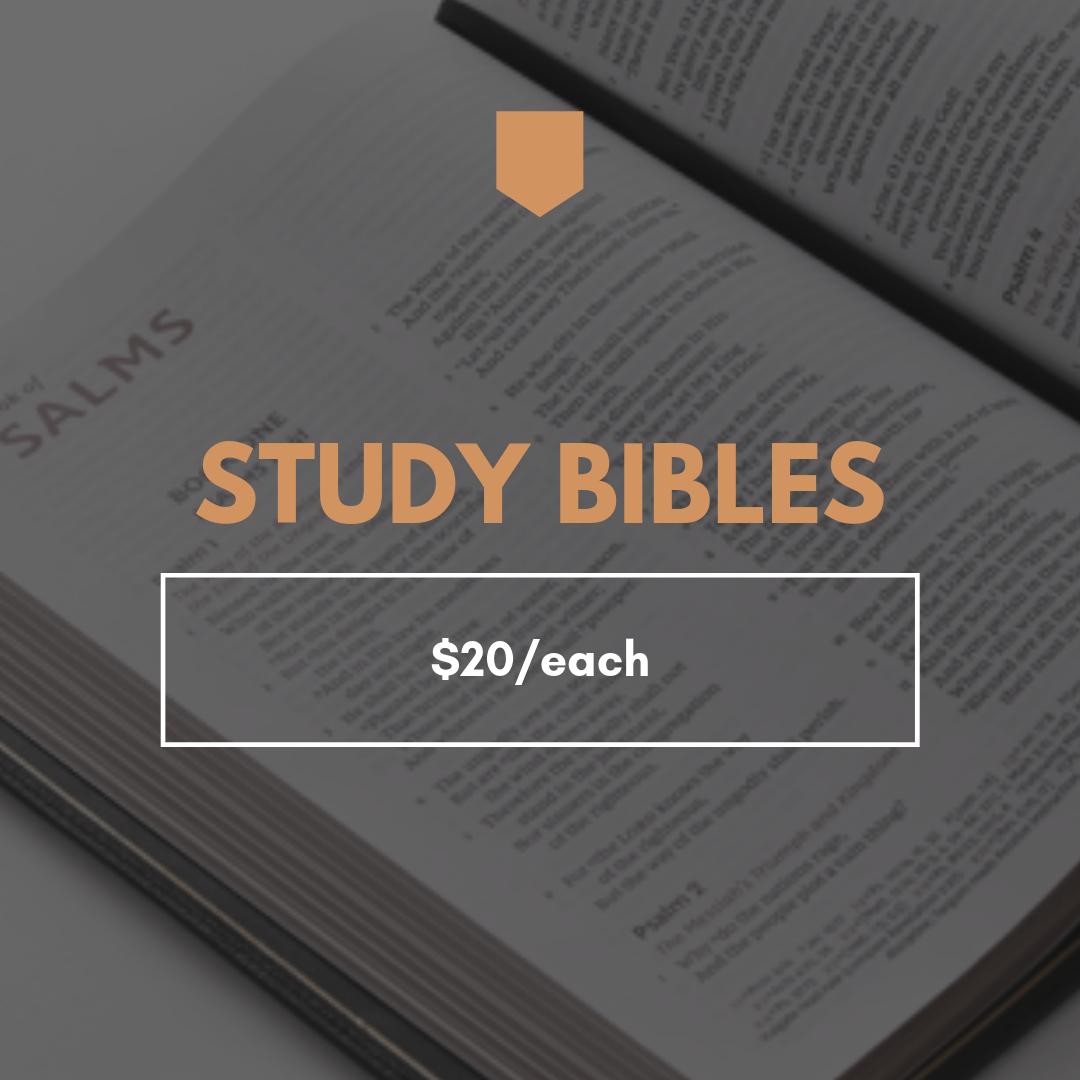 Study Bibles.png