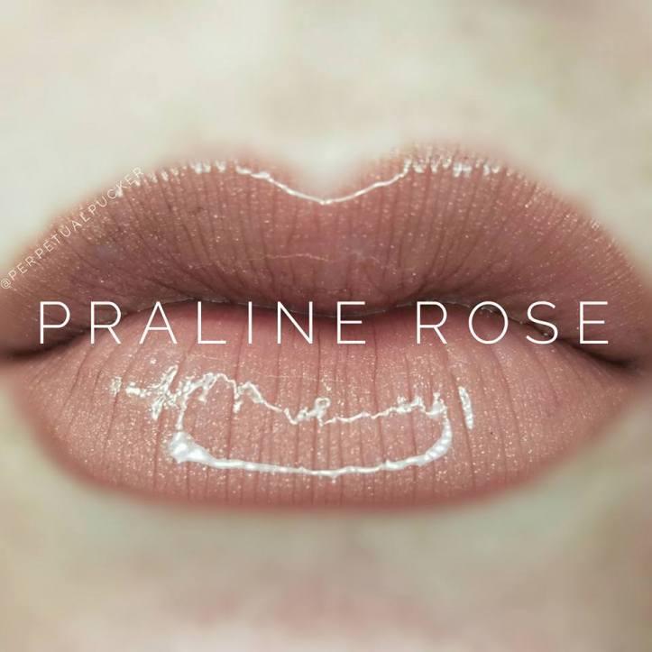 Praline-Rose.jpg