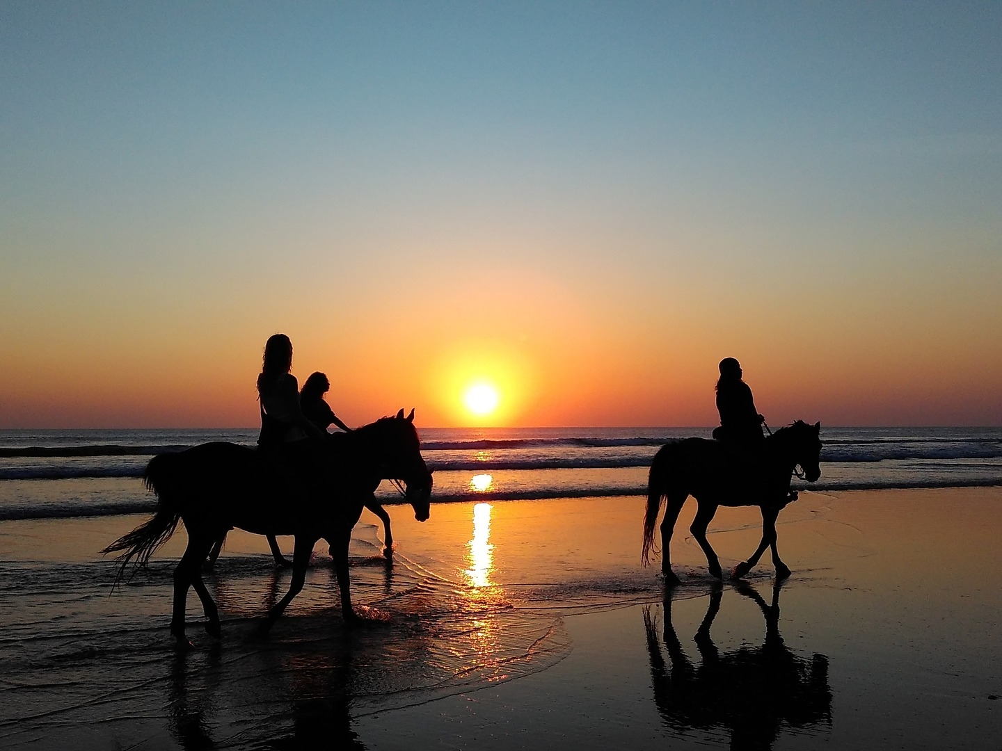Horseback Riding - Experience this paradise on a different setting, riding the back of a horse on a wild beach. Discover the breathtaking views of these tropical paths. whether you are a beginner or experienced, the excursion adapts to any level. We are happy to work with a ranch that is very loving and respectful to his beautiful animals. Discover the hidden trails and the seaside. From 30' minutes to the whole day, there are plenty of magnificent excursions available for all ages.