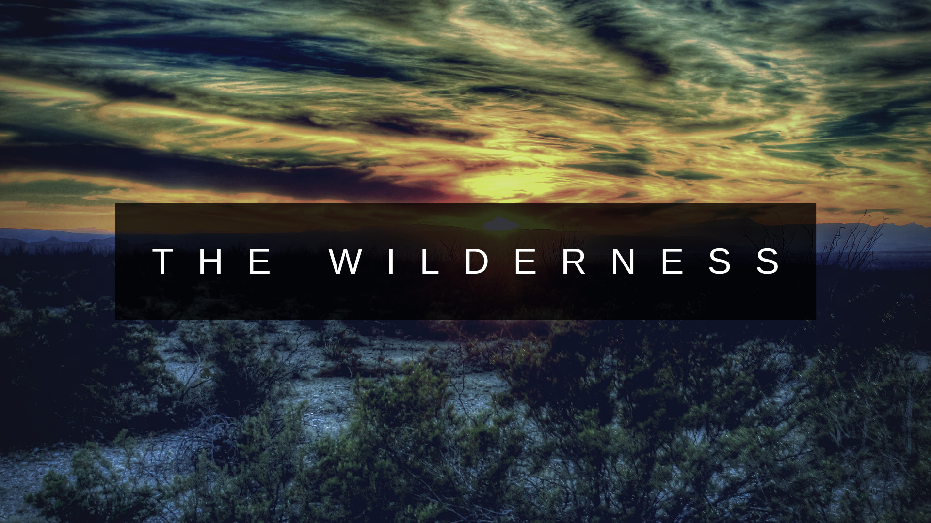 the wilderness - Who does Jesus say we are? Let's dig in and find out.