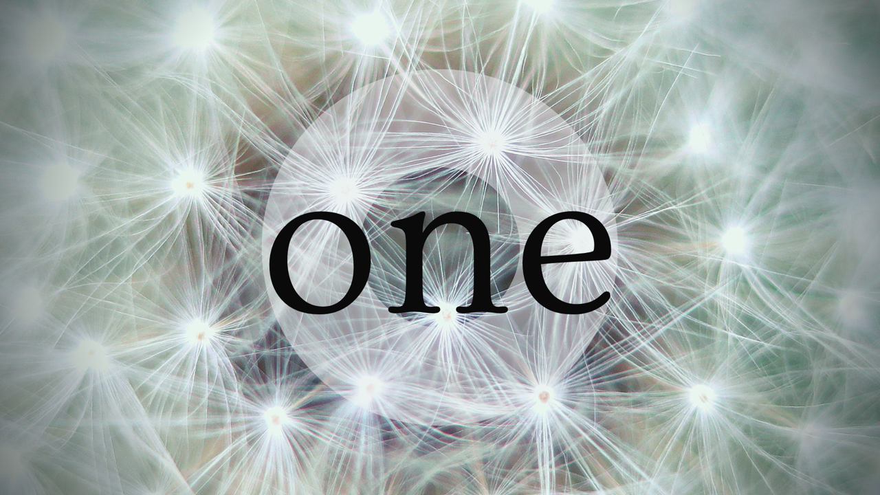 """One - """"So in Christ we, though many, form one body"""""""