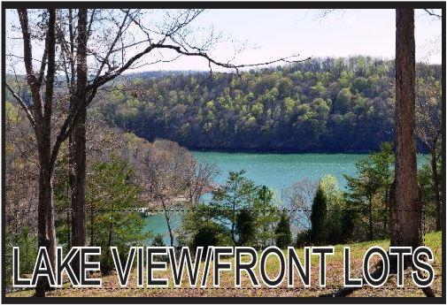 LAKE VIEW-FRONT HOMES.JPG