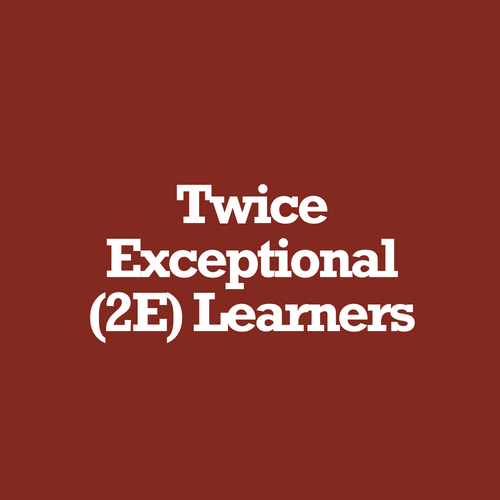Twice Exceptional.png