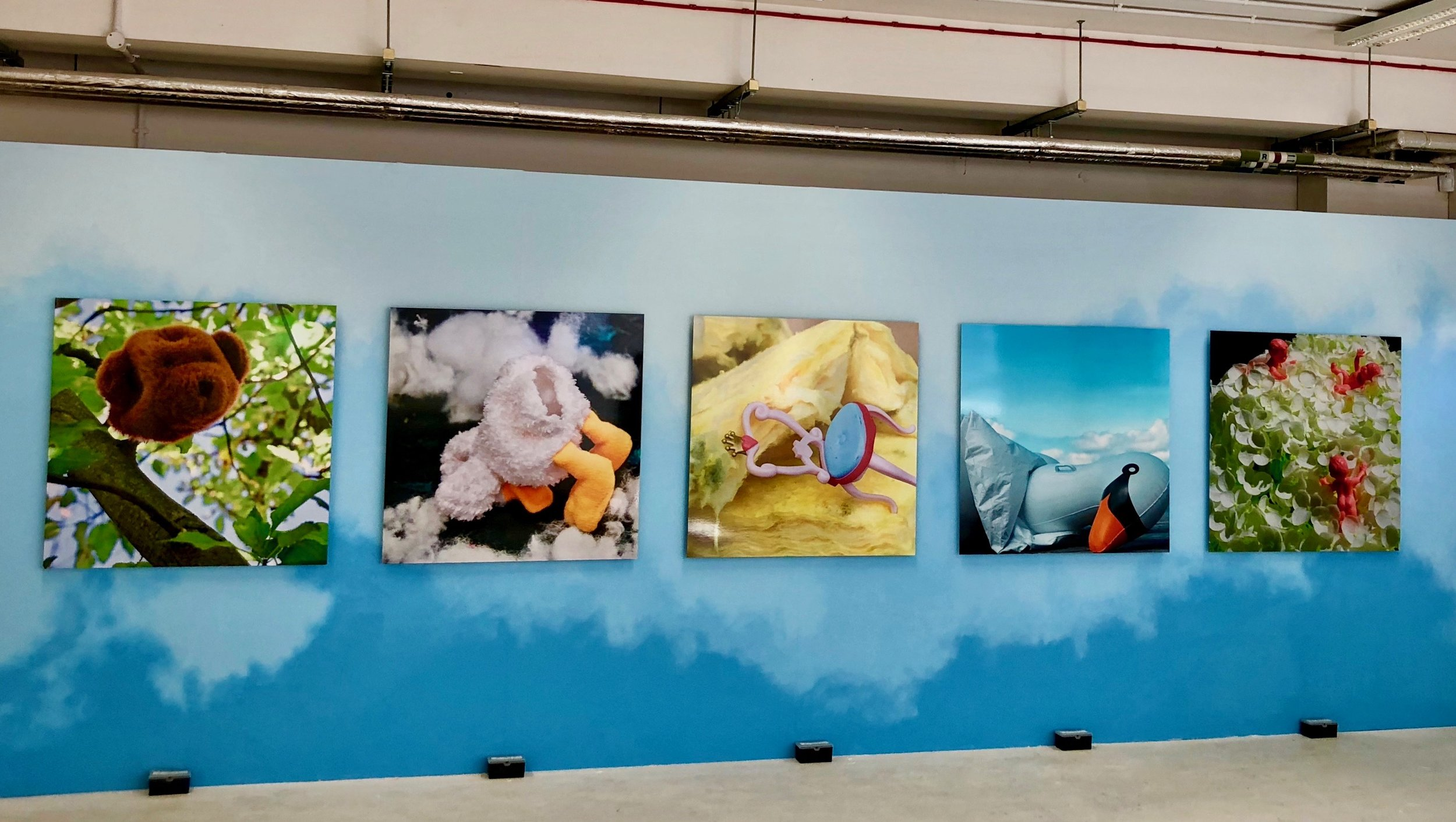 Woodland Aroma  (Gallery view) Large Format Photography on handprinted wall mural with artificial scent boxes 7m x 2.5m