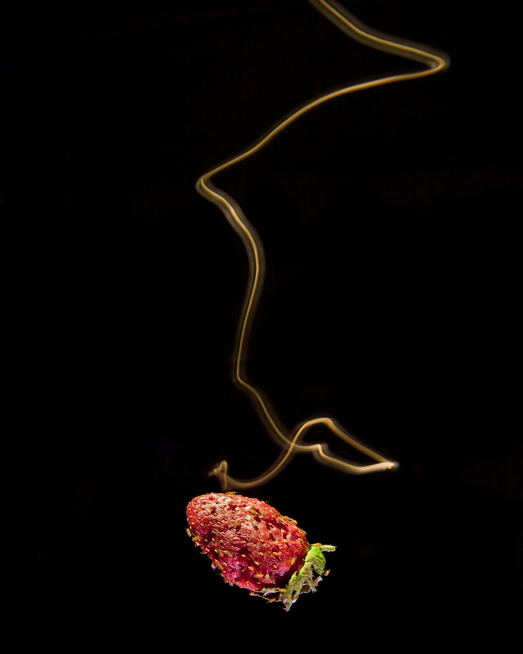 Long exposure of an illuminated fly as it approaches a fermenting strawberry.