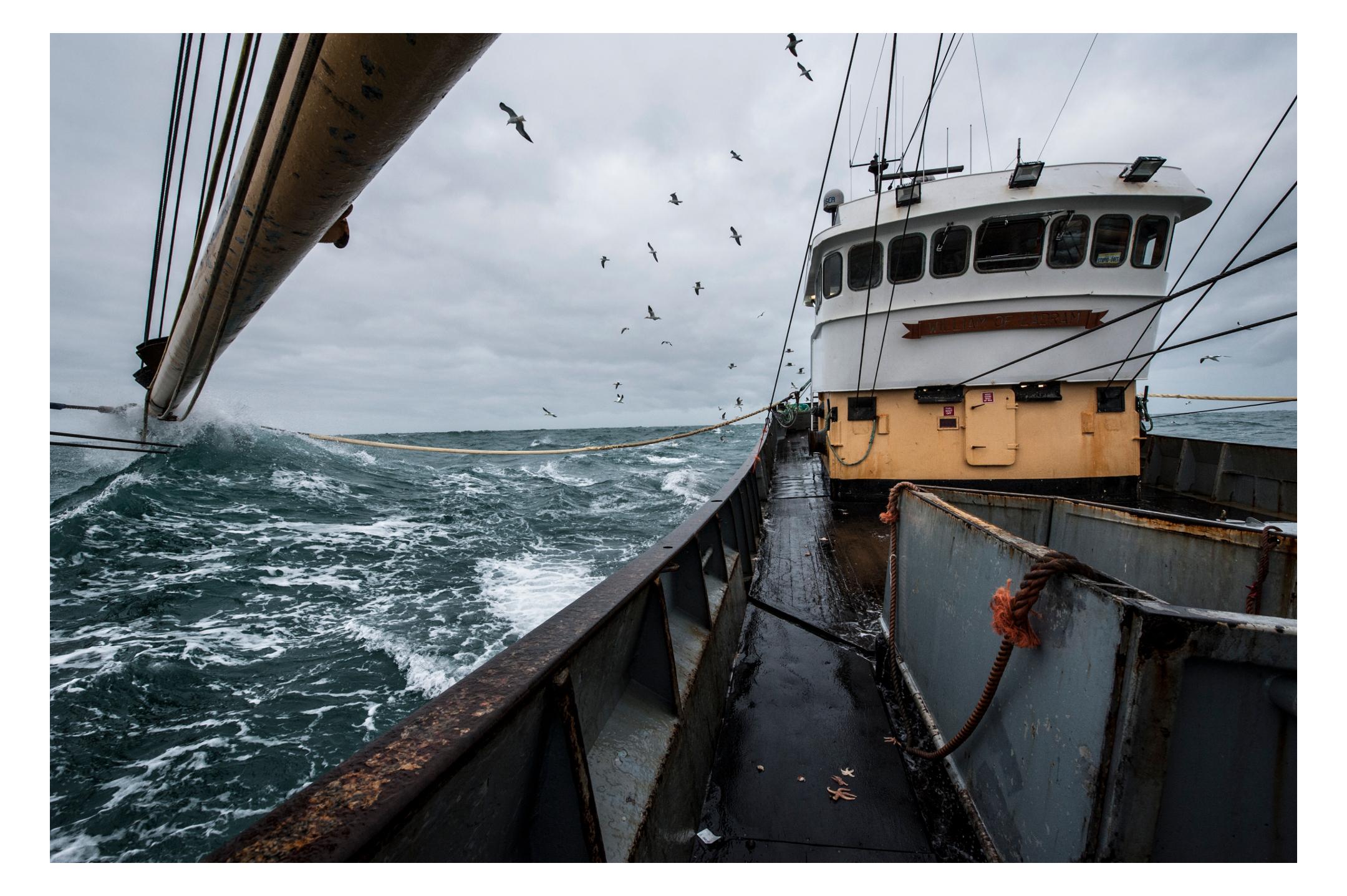 waterdance_beam_trawlers_2.jpg