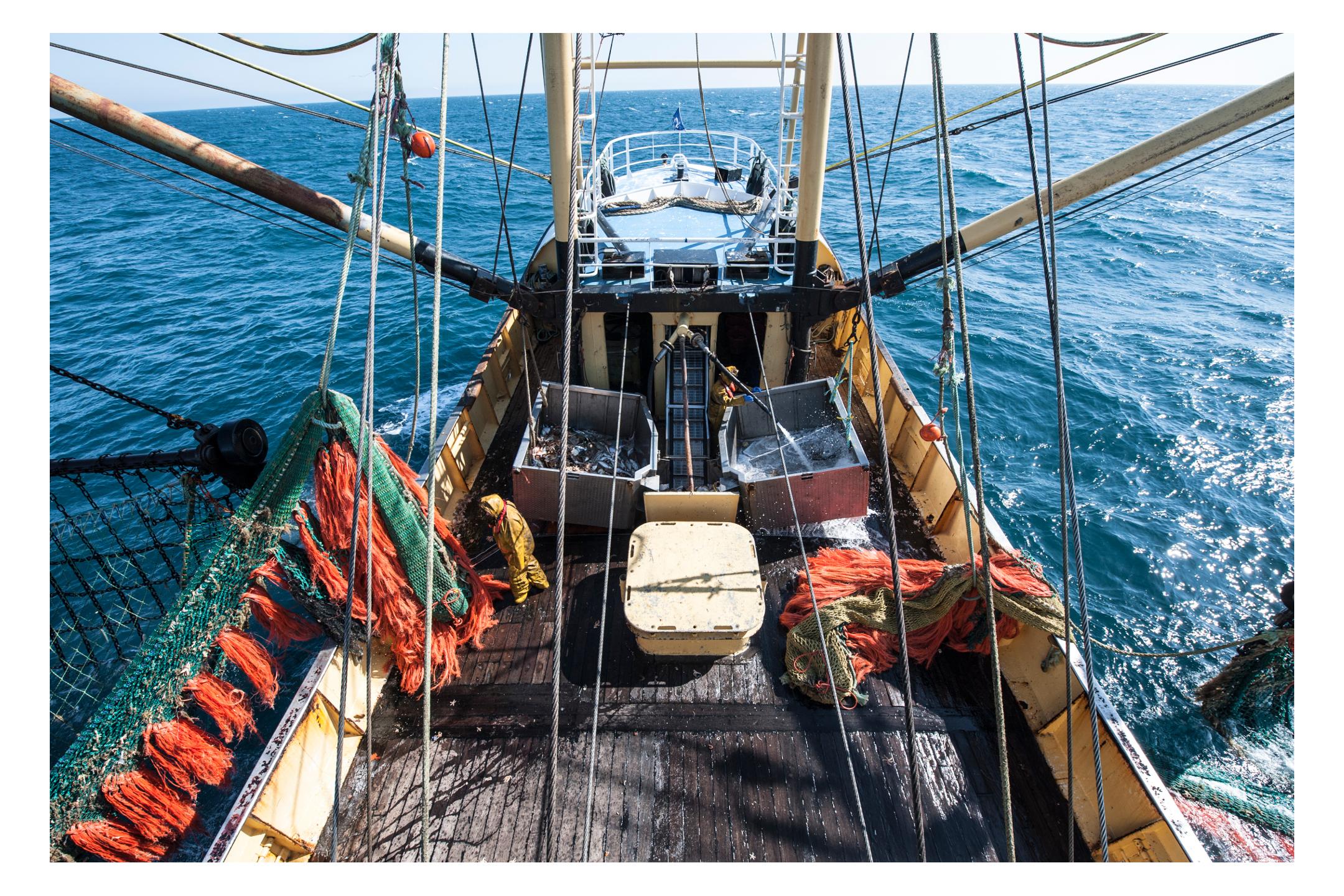waterdance_beam_trawlers_1.jpg