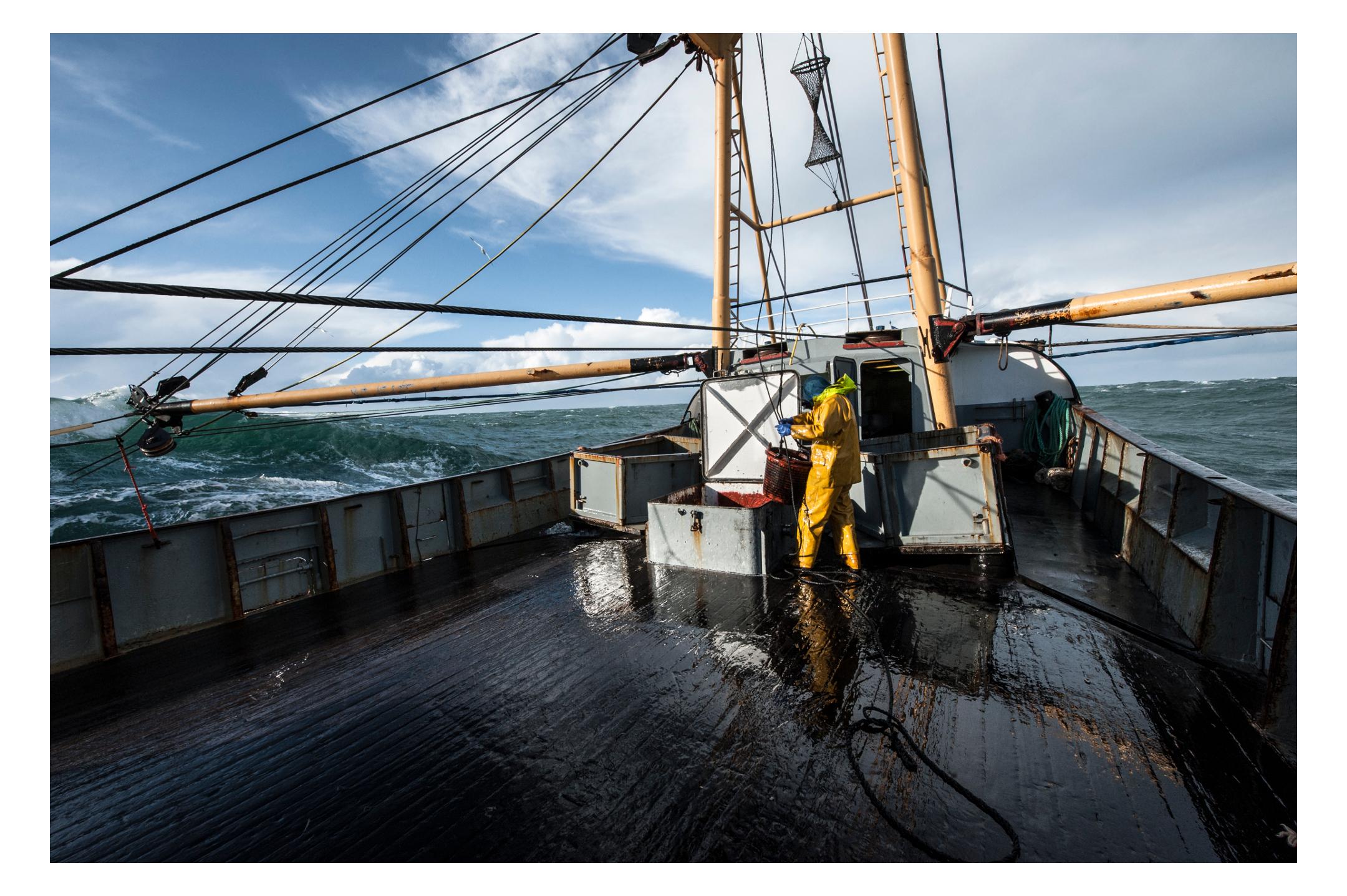 waterdance_beam_trawlers_7.jpg