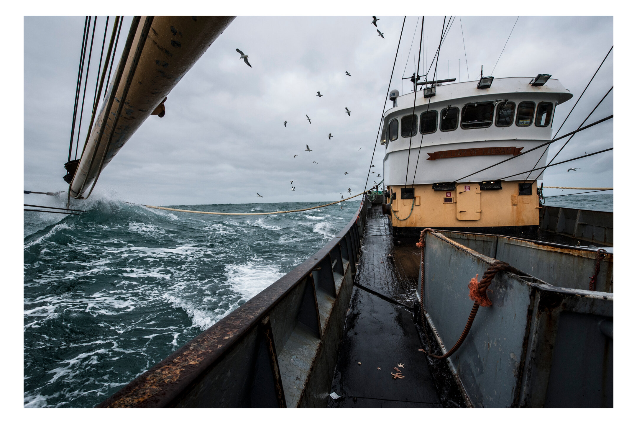 waterdance_beam_trawlers_2.jpg