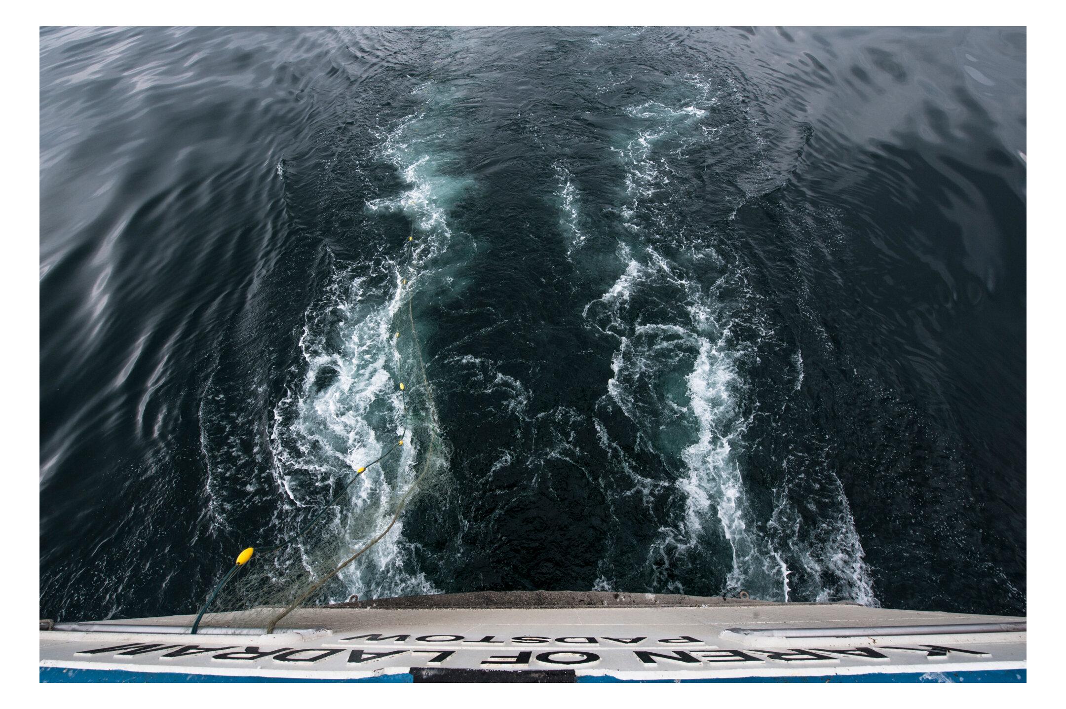 Waterdance_Netters_6.jpg