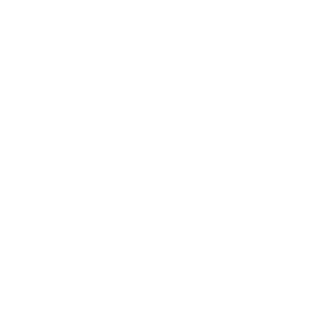 Ministry Solutions Logo (white).png