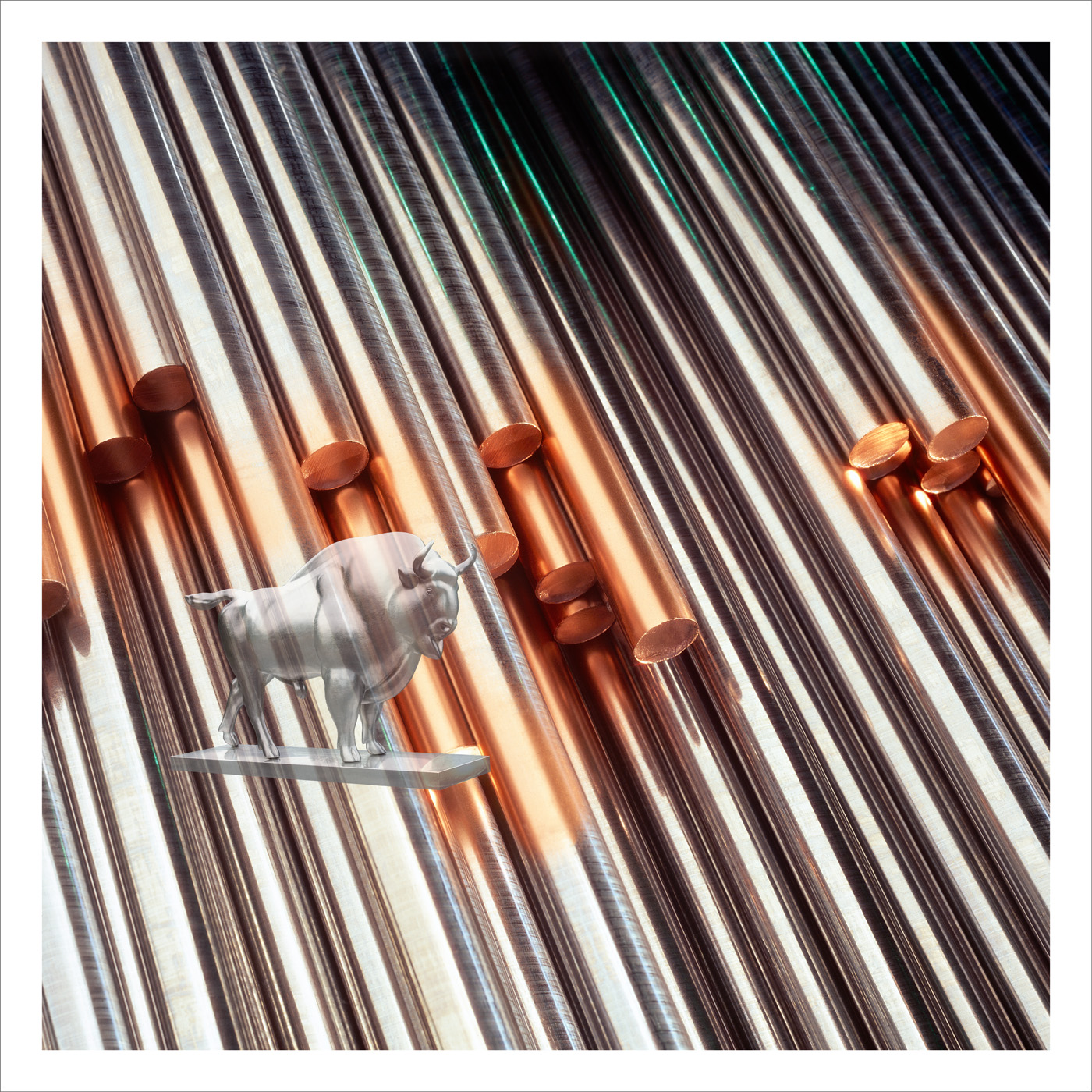 ASP och rostfritt stål.jpg