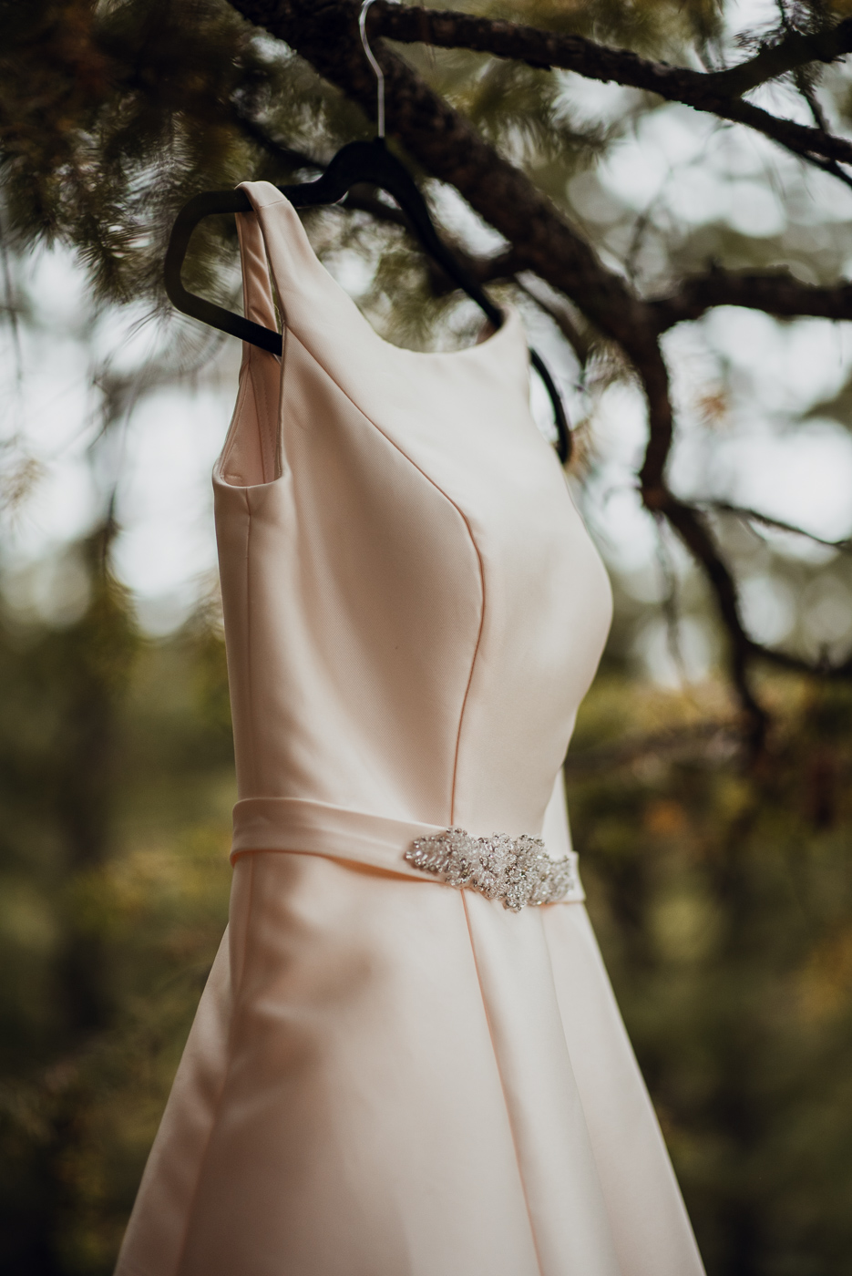 Candice Rawlin Wedding PHOCO Photography Pines Genesee Golden Colorado Fog -1.jpg