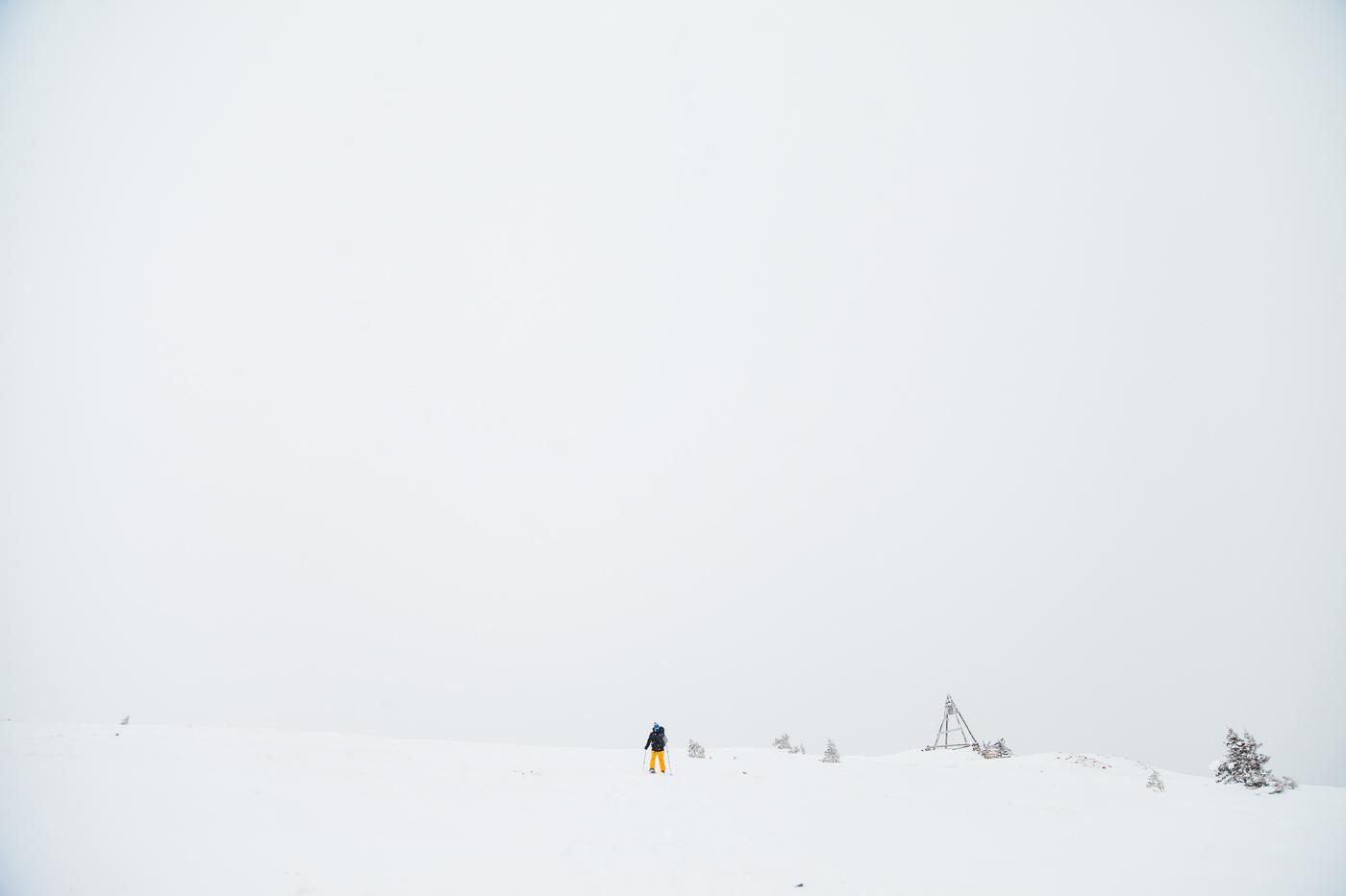 PHOCO Best of 2017 Fort Collins Colorado Photographer Ryan-1.jpg