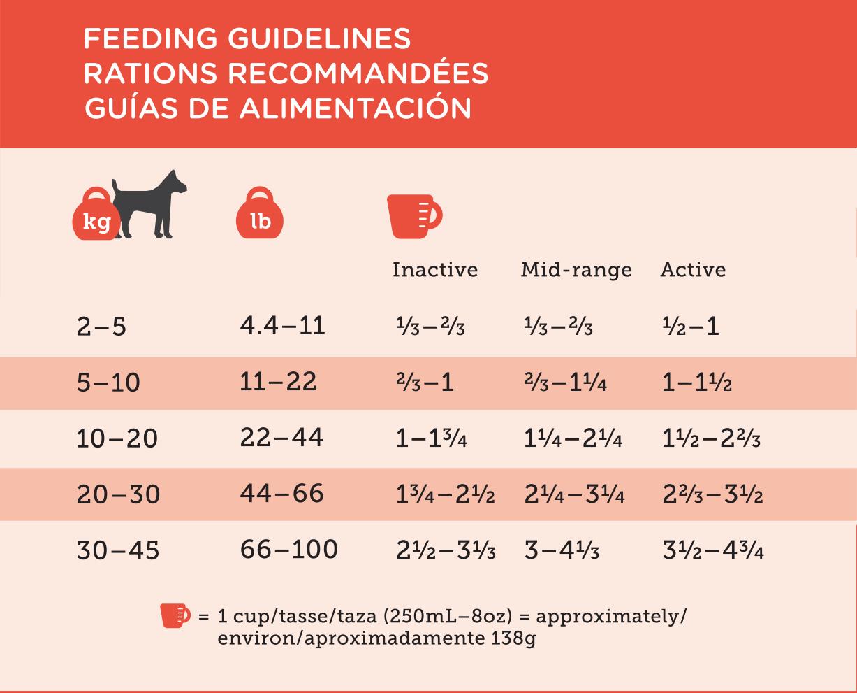 Lamb and Rice feeding guideline.jpg