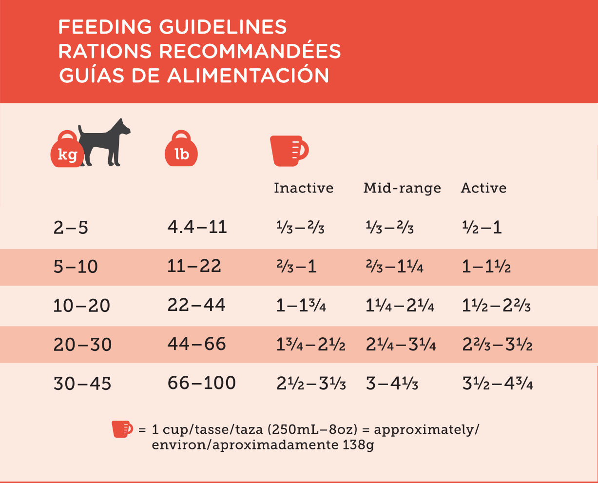 Lamb and Rice feeding guideline.jpg