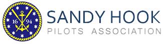 logo-sandy hook.png