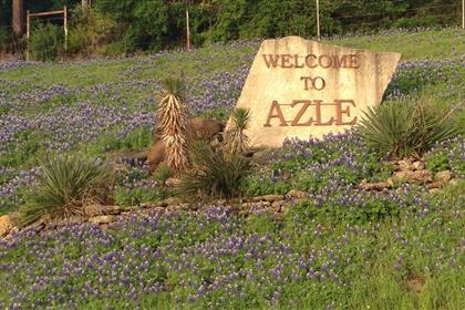 Azle sign bluebonnets2_420x280_thumb.jpg
