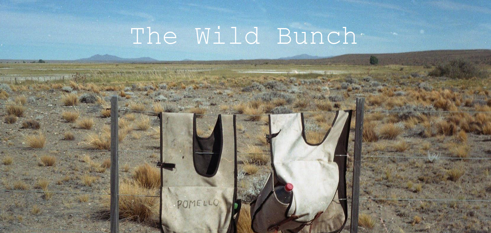 the wild bunch poster.jpg